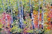 birch forest 3 24x36 june 7