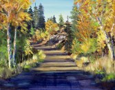 Horse thief road aspens