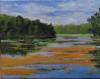 Pond At Kensington